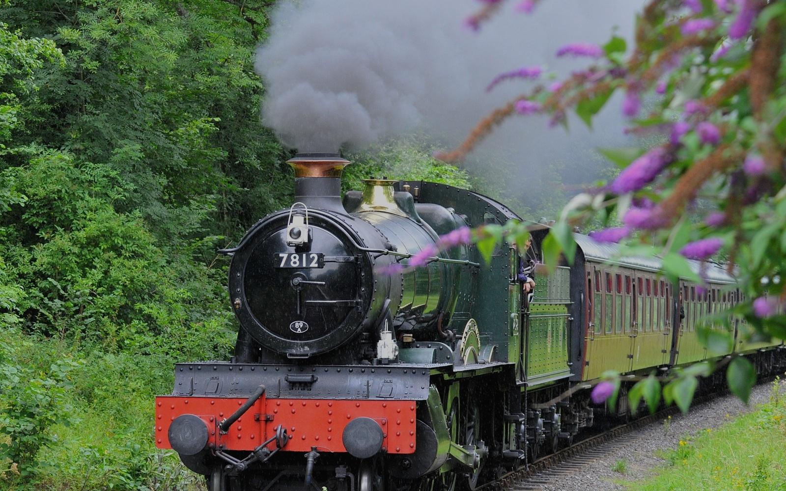 Shamrock Trains